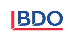 BDO Logo (small size)